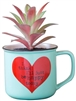 "2-In-1 ""I Think I'll Just Be Happy Today"" Succulent & Coffee Mug"