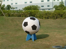 Giant Soccer Ball