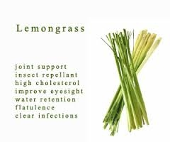 Lemongrass Mint White Balsamic