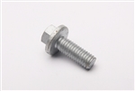 Stainless Steel Flanged Bolt M6x16MM (used on iner door panels) (S)