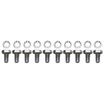 1967 - 1981 Camaro Timing Chain Cover Bolts Set, Chrome 10 Pieces