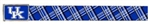 University of Kentucky Seatbelt Clothing Belt