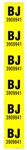 1967 Camaro Rear Leaf Spring Tag Decal, BJ Code Pair