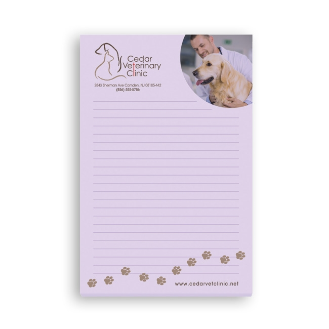 16-6A50 Bic 4x6 Adhesive Notepad 50 Sheet
