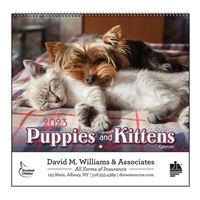 35-810 Puppies & Kittens Wall Calendar