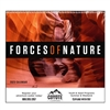 41-710 Forces of Nature Wall Calendar