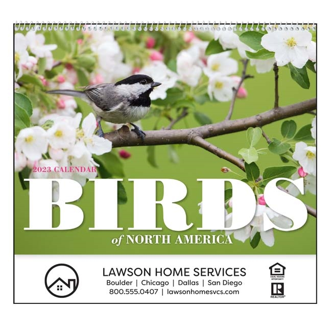 61-836 Birds of North America Wall Calendar