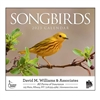 81-875 Nature's Songbirds Wall Calendar
