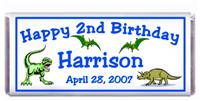 Childrens Birthday Dinosaurs Candy Bar