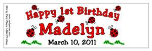 Childrens Birthday Lady Bug Water Bottle Labels