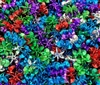 18mm Starflake Sunburst Plastic Beads, 200 ct Bag