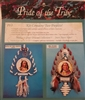 Pride of the Tribe (King of the Crows & Big Snake) Southwest Craft Project Kit