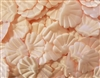 Seashell Puffins Padded Satin Applique (10 pieces)