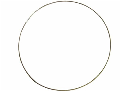 "19"" Brass Ring"