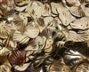 20mm Gold Seashell Sequins (12 pcs)