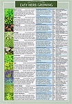 HERB GROWING LAMINATED INFORMATION CARD