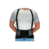 Allegro 7160 BodyBelt Back Support