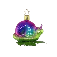 Snail - We Love It Colorful!
