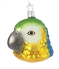 Blue And Yellow Mackaw Parrot