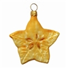 Carambola Star Fruit Slice