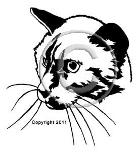 Siamese Cat Head memorial graphic