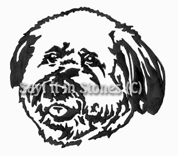 Bichon Frise Dog  Head memorial graphic