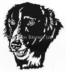 Border Collie graphic apetmemorial.com