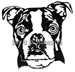 Boston Terrier graphic - apetmemorial.com