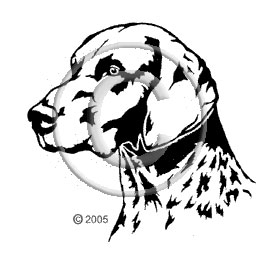 German Short hair pointer image - apetmemorial.com