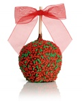 HOLLY BERRY CARAMEL CHOCOLATE GOURMET APPLE