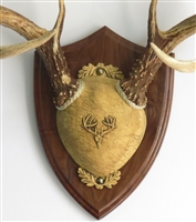 Ultimate Antler Mount Kit Walnut