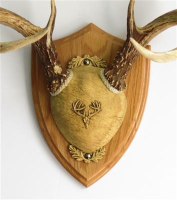 Ultimate Antler Mount Kit Medium Oak