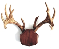 "Black Walnut ""The Deer Stand"" Antler Mounting Kit"
