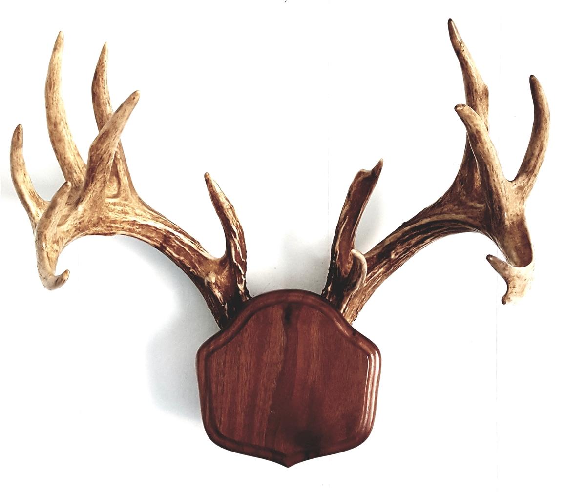 "Black Walnut ""The Deer Stand"" Antler Mounting Kit"