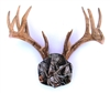 "Camo ""The Deer Stand"" Antler Mounting Kit"