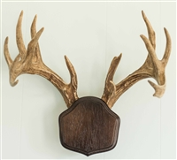 "Dark Oak ""The Deer Stand"" Antler Mounting Kit"