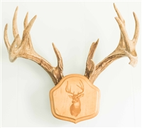 "Laser Engraved ""The Deer Stand"" Antler Mounting Kit"