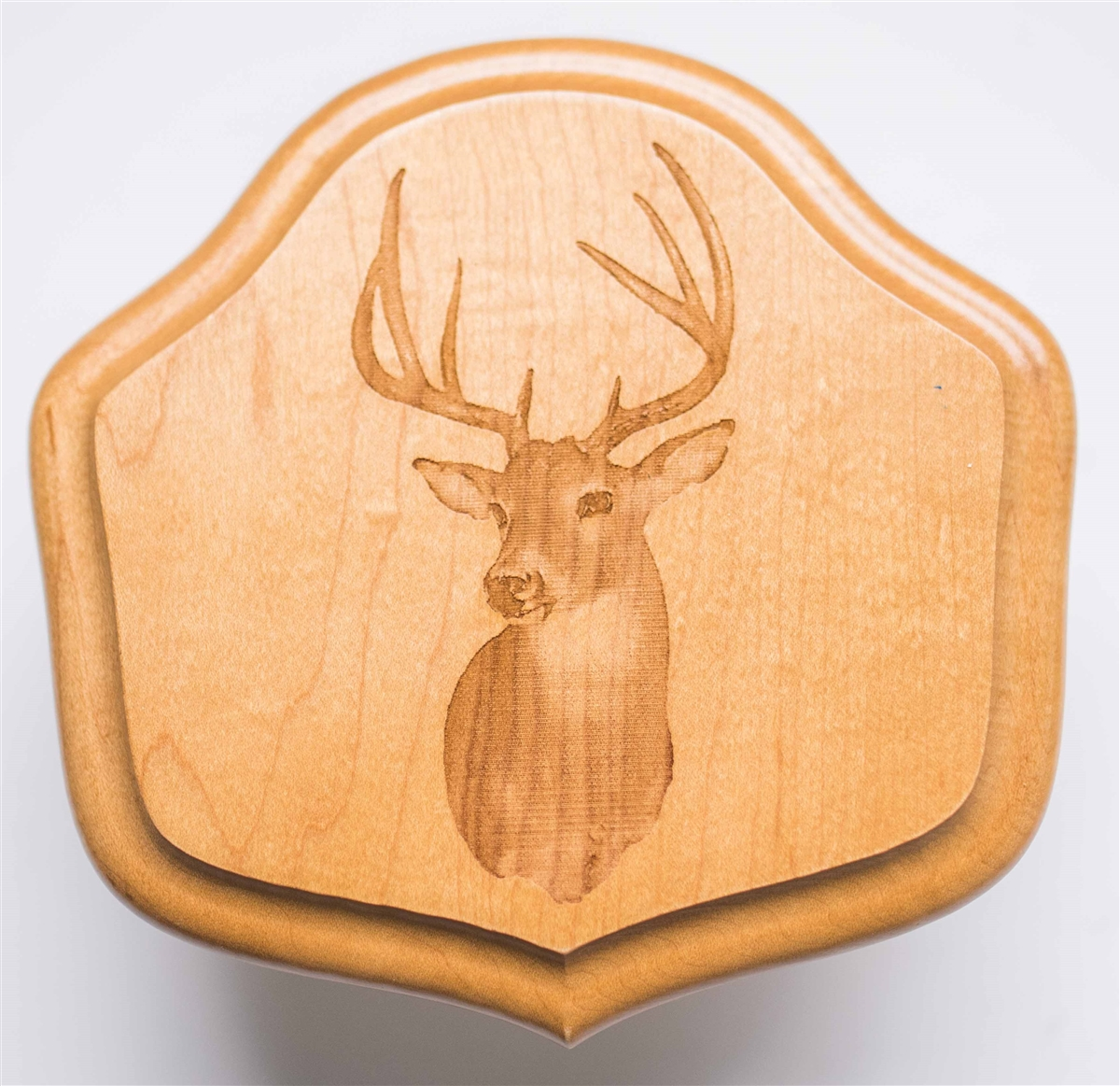Deer antler mounting kit instructions - Deer Antler Mounting Kit Instructions 32