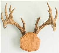 "Medium Oak ""The Deer Stand"" Antler Mounting Kit"