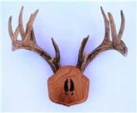 "Medium Oak ""The Deer Stand"" Antler Mounting Kit with Cared Tracks"