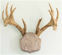"Weathered Wood ""The Deer Stand"" Antler Mounting Kit"