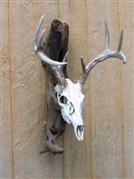 Driftwood Wall Mount for Deer