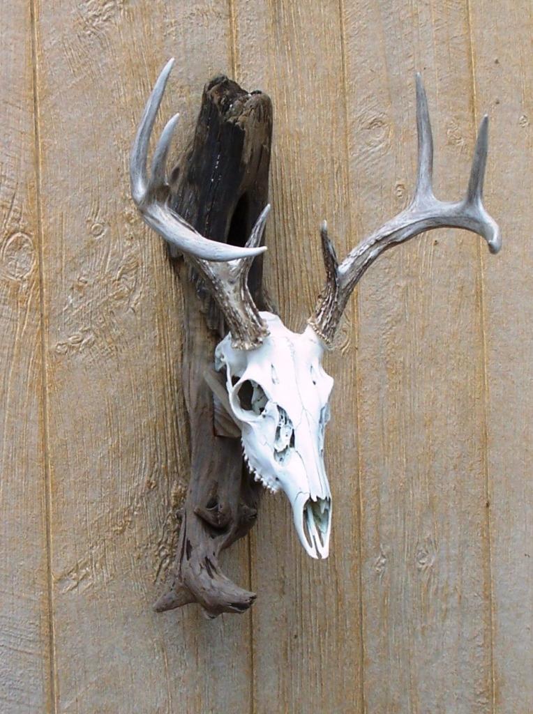 Driftwood Wall Mount For Deer