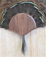Black Walnut Turkey Fan Beard Mounting Kit - 01