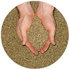 <B>ORDER#: SEED-01</B> <BR>Sterilized-Hemp-Seeds