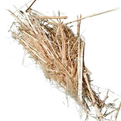 <B>ORDER#: STALK1</B> <BR>100% Hemp Stalks, American Grown