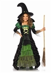 Green and Black Storybook Witch Costume