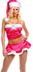 Sexy Santa Holiday Costume
