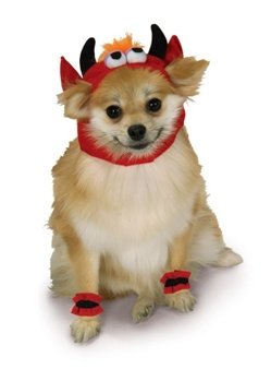 Dog Devil Costume