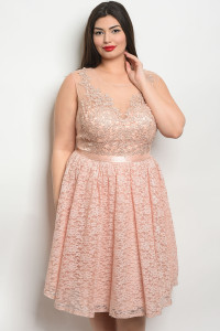 S20-11-5-D24131X BLUSH PLUS SIZE DRESS 2-2-2